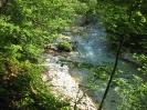 Dan slovenskih planincev-120let PZS-Kamniška Bistrica, 15.6.2013