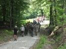 češnjev pohod na Boč, 8.6.2013