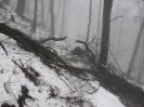 pohod na Donačko goro, 8.2.2014