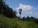 POHOD NA GRILOVO KAPELO IN BOČ, 25.06.2010