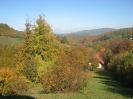 Tetka jesen - kostanjev piknik, 16. 10. 2016